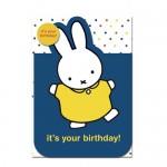 "Miffy Karte - ""it's your birthday!"""